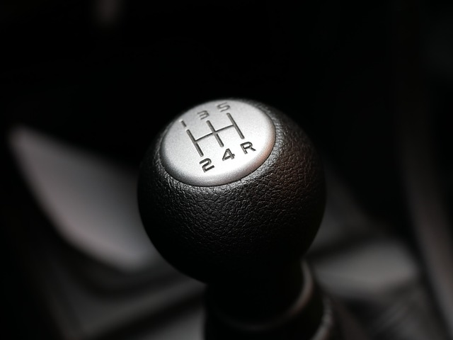 řadící páka Suzuki